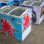 یخچال بستنی برند نارسیس در ابعاد مختلف کوچک و بزرگ
